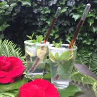 Mojito - Zomerse recepten
