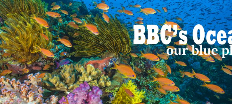 BBC's Oceans, our blue planet